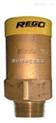 RegO 3129G液化气安全阀、3127G煤气安全阀、3133G管道安全阀