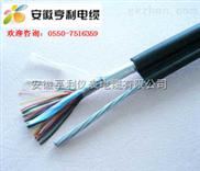 IA-JVPVRP-(忠县计算机电缆)(IA-JVPVRP电缆)