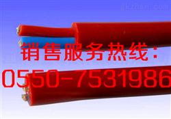 屏蔽硅橡胶电缆