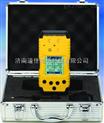 DJY-1200氢气检测仪