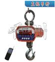 OCS-XC-JJE-1吨直视的吊钩秤,2吨吊秤,3吨电子吊磅