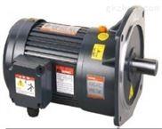 永嘉功率100W小型减速电机