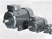 VEM电机、VEM标准三相异步电机、
