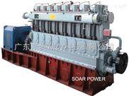9300D/8300D/6300D-淄柴燃气发电机组