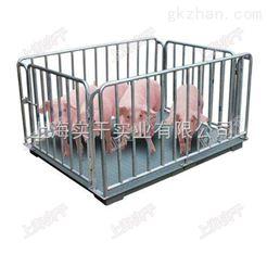 牲畜動物秤帶圍欄牲畜動物秤 黑龍江畜牧秤生產廠家